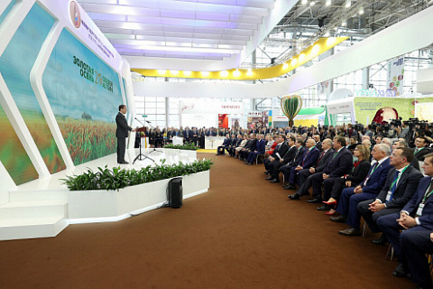 "Russian agricultural exhibition ""Golden Autumn"" 9-12 October"